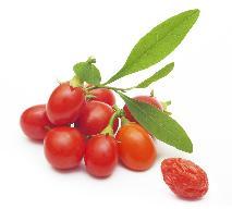 Zalety jagód goji - jakie są?
