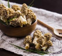 Smardze – wiosenne grzyby - [zobacz pod jakimi warunkami wolno je zbierać]