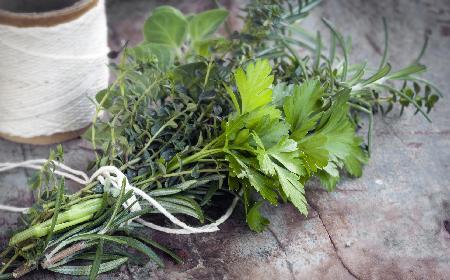 Dlaczego warto używać ziół i przypraw? Przyprawy w kuchni i ziołolecznictwie